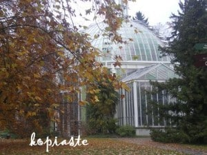 gardin-greenhouse