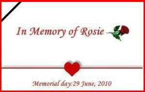 Logo for Rosie