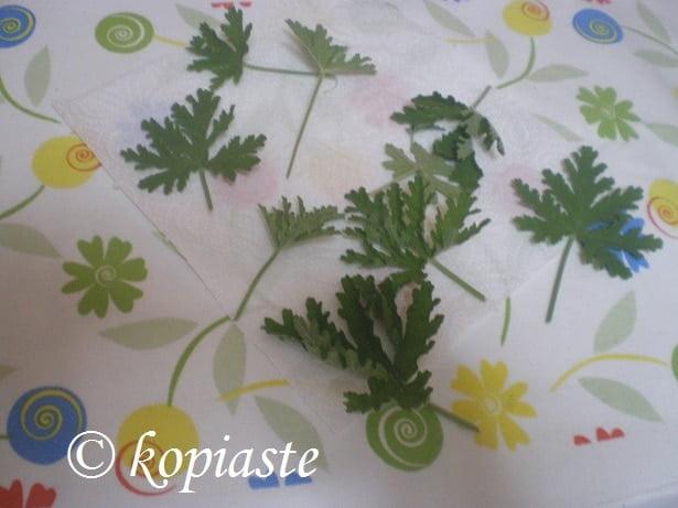 rose geranium how to use