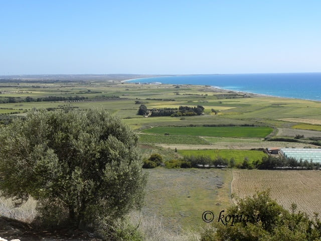 Coast of Akrotiri from Kourion